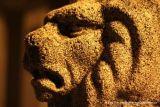 Lev - okrasa památníku padlých